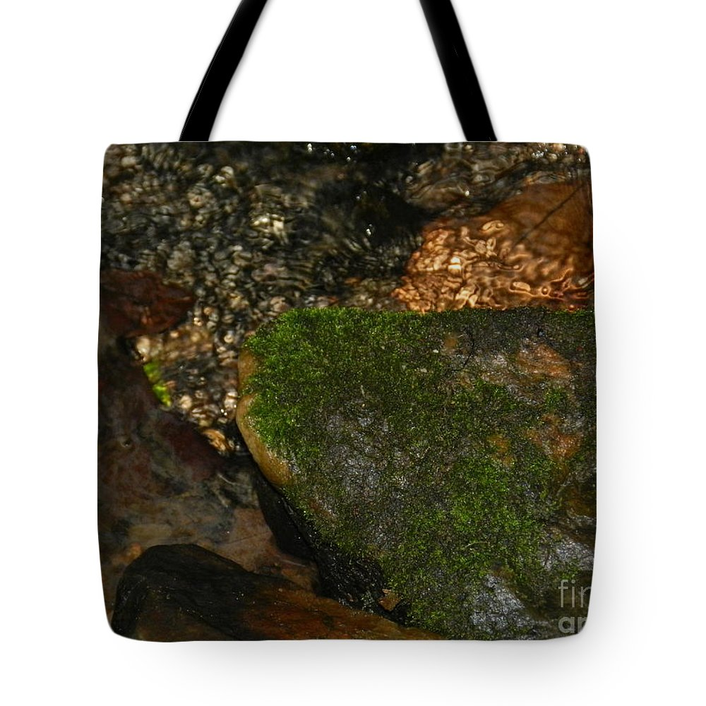 Tyler Tote Bag featuring the photograph Tyler Stream 2 by Heather Jane