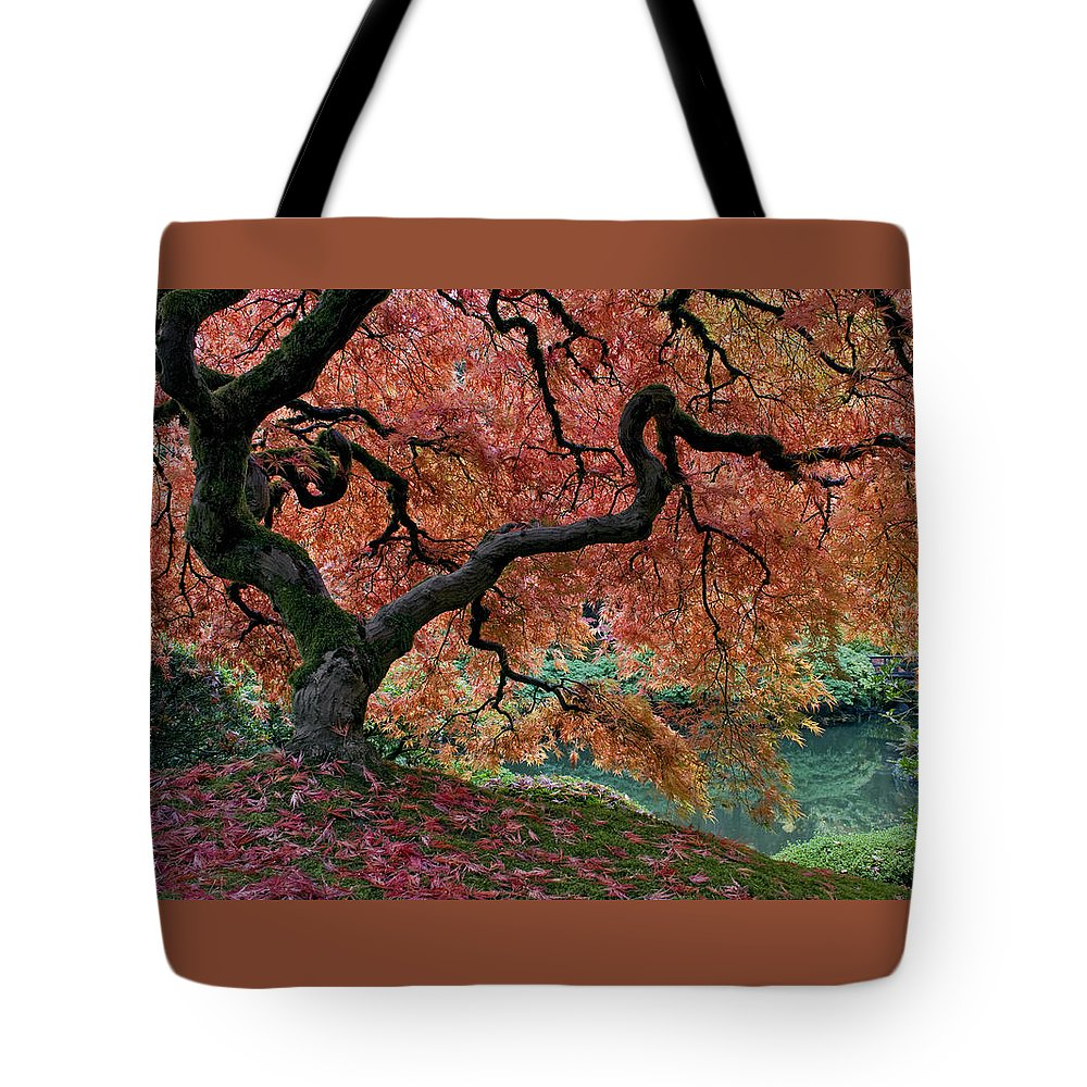 Under Fall's Cover Tote Bag featuring the photograph Under Fall's Cover by Wes and Dotty Weber