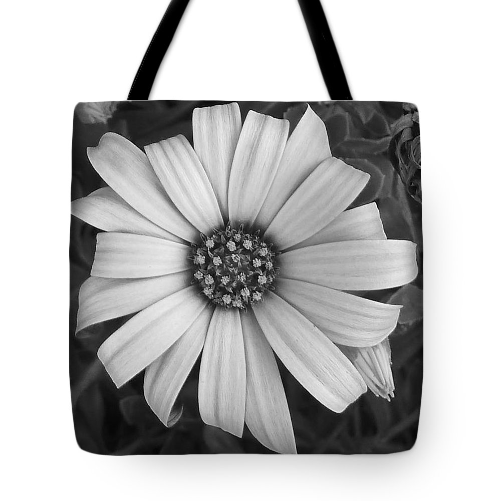 African Tote Bag featuring the photograph Under My Protection by Steve Taylor
