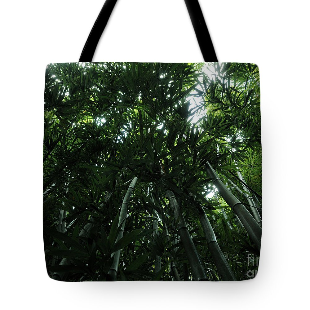 Bamboo Tote Bag featuring the photograph Under The Bamboo Haleakala National Park by Vivian Christopher