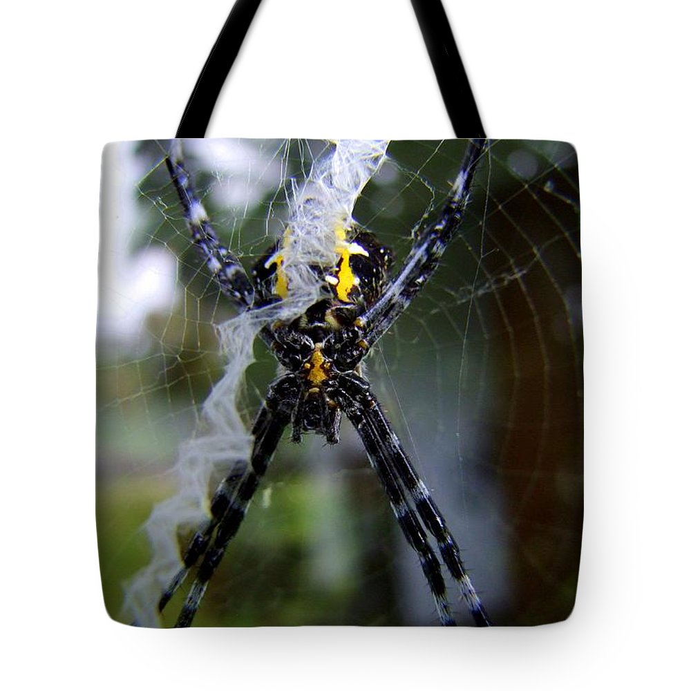 Spider Tote Bag featuring the photograph Under The Belly Of The Beast by Mary Deal