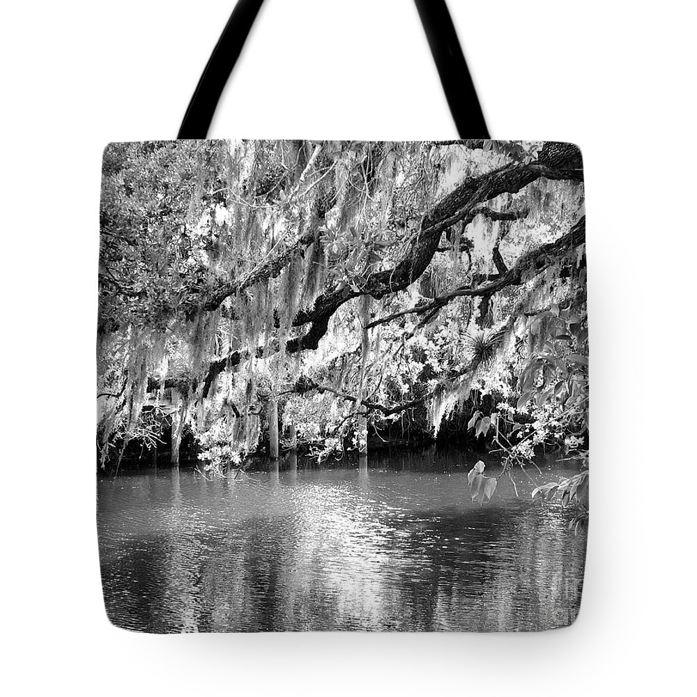 Spanish Moss Tote Bag featuring the photograph Under The Canopy by Anita Lewis