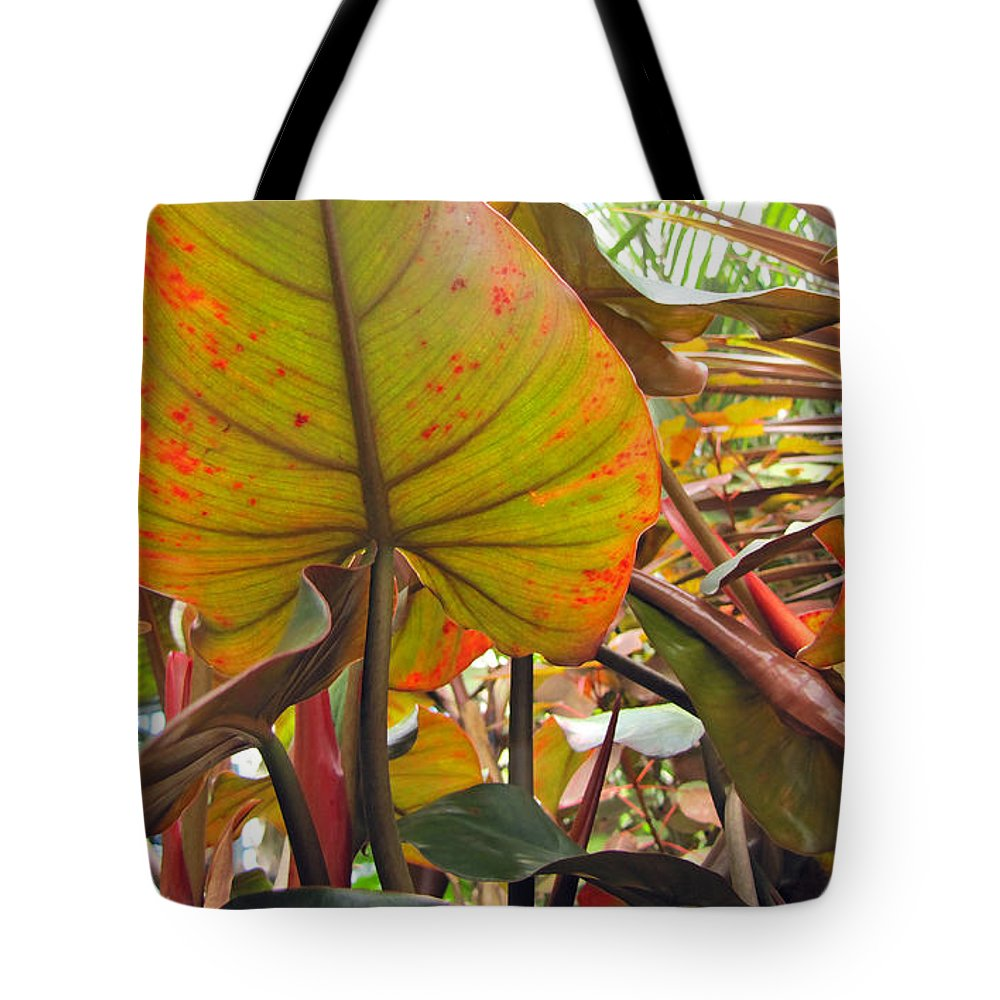 Duane Mccullough Tote Bag featuring the photograph Under The Tropical Leaves by Duane McCullough