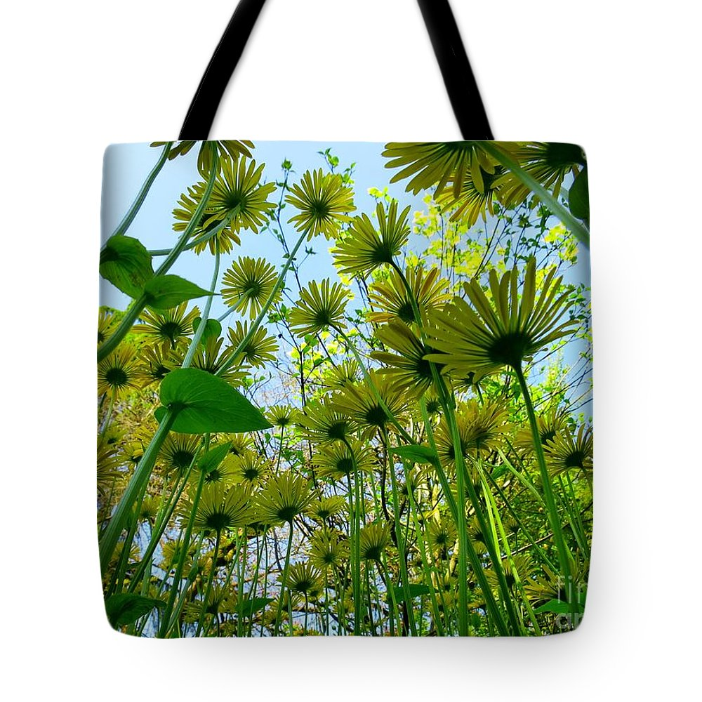Daisy Tote Bag featuring the photograph Under The Umbrellas by Lena Photo Art