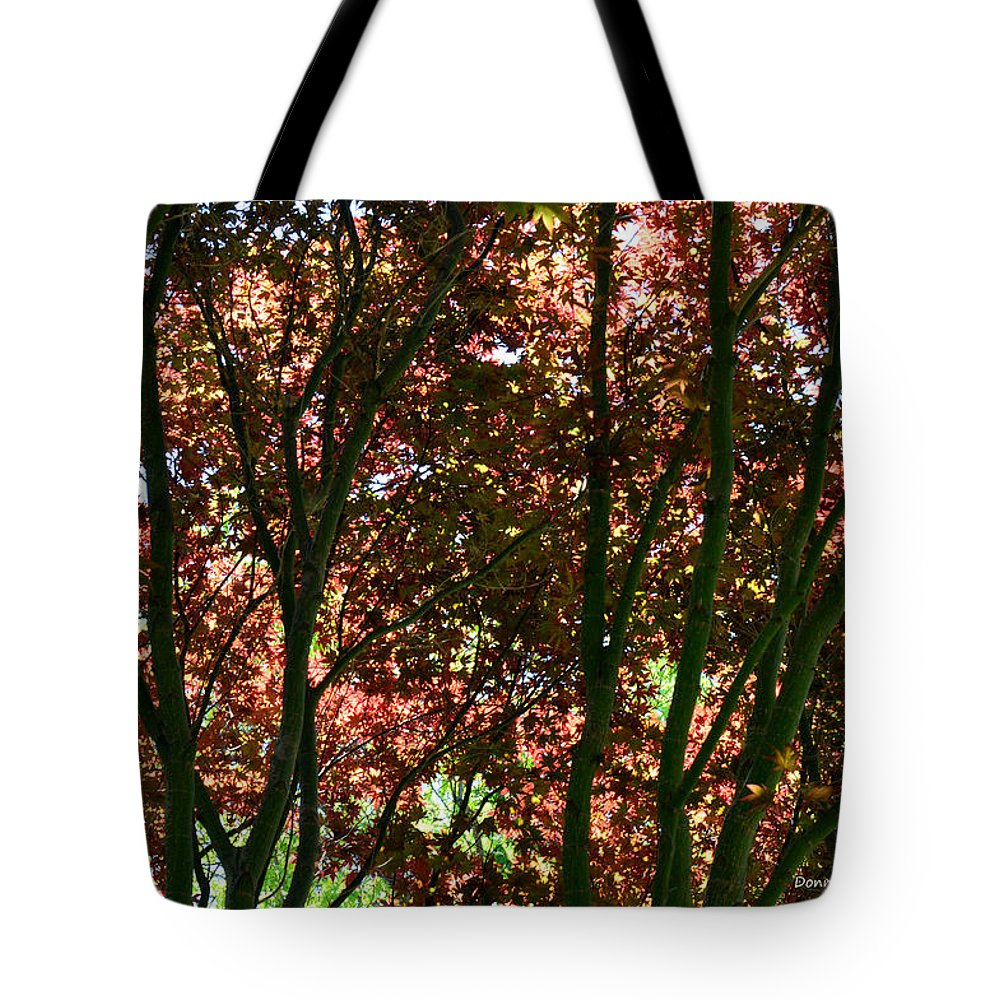 Maple Tree Tote Bag featuring the photograph Under Your Protection by Donna Blackhall