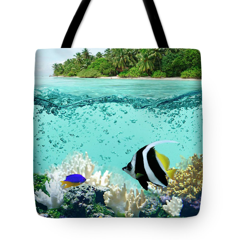 Bedrock Tote Bag featuring the photograph Underwater Life In Tropical Sea by Narvikk