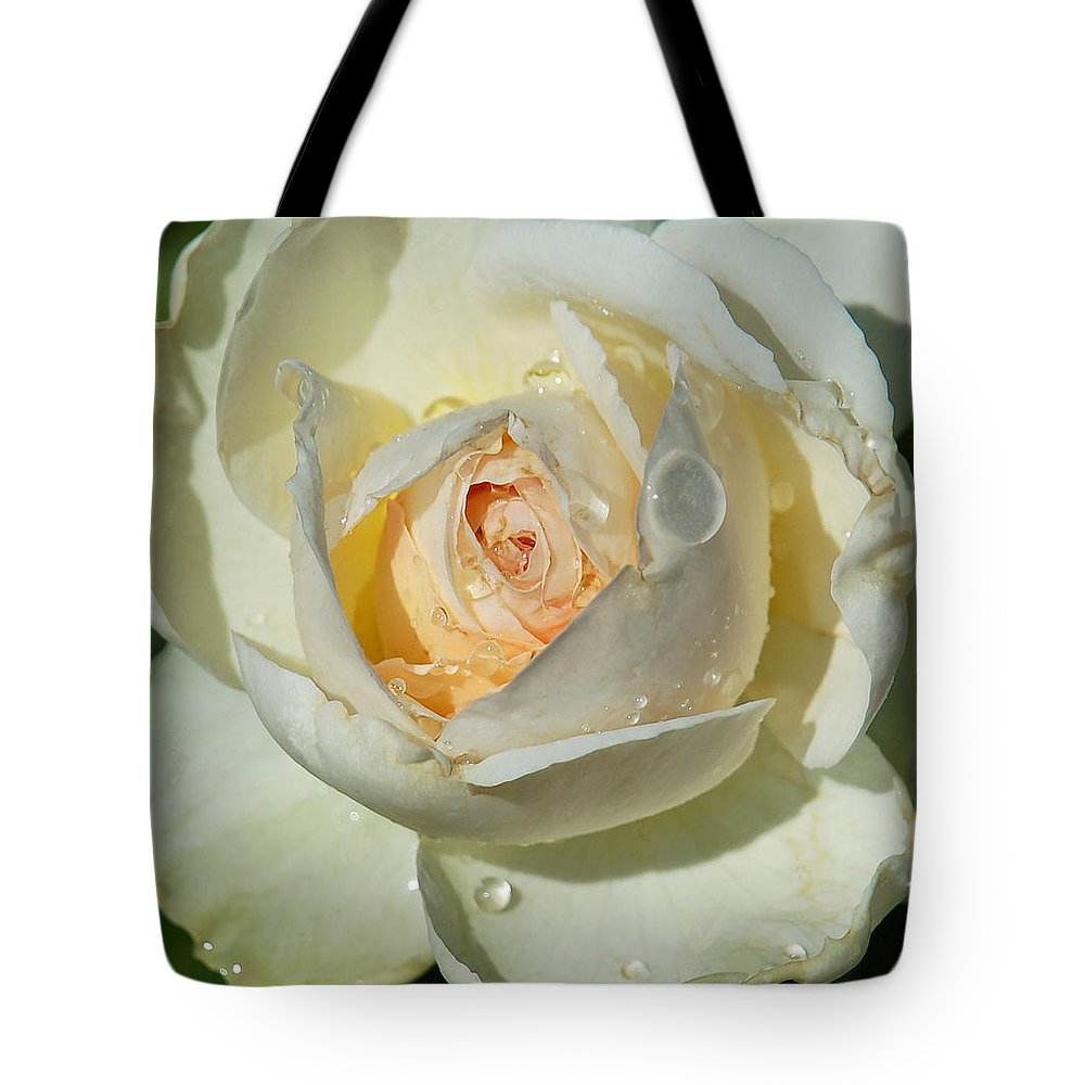 Rose Tote Bag featuring the photograph Unfolding by Suzanne Gaff