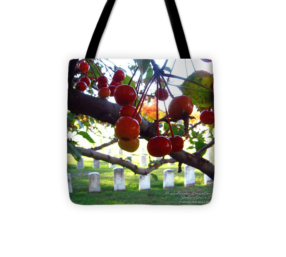 Johnstown Tote Bag featuring the photograph Unknown Plot Grandview Flood Memorial by Karen Mesaros