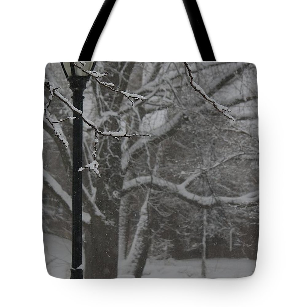 Winter Tote Bag featuring the photograph Unlit by Veronica Batterson