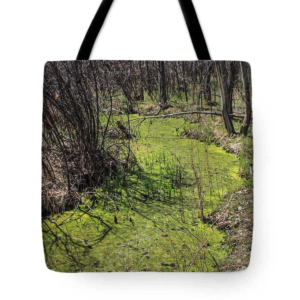 Creek Tote Bag featuring the photograph Untouched Algae Takeover by Josh Scanlon