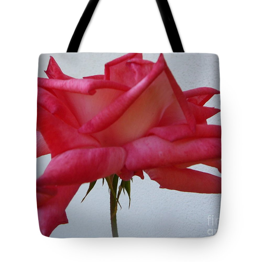 Pink Roses Tote Bag featuring the photograph Charmaine by Mary Brhel
