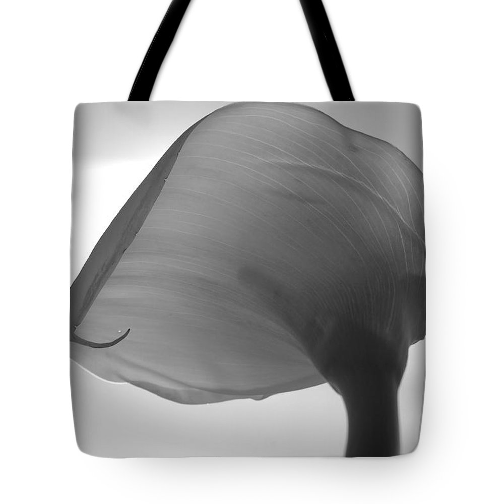 Flower Tote Bag featuring the photograph Up In The Air by Donna Blackhall