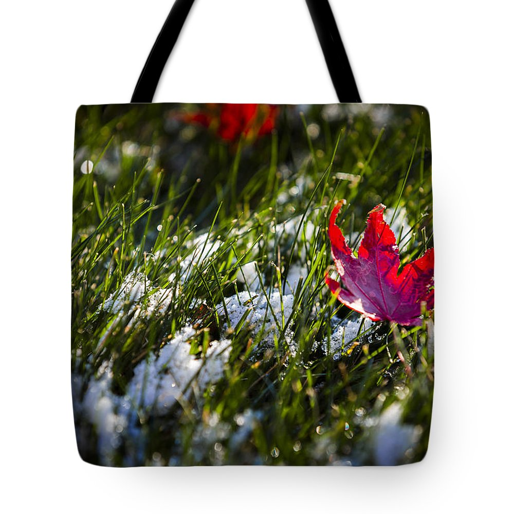 America Tote Bag featuring the photograph Upcoming Winter by Eduard Moldoveanu