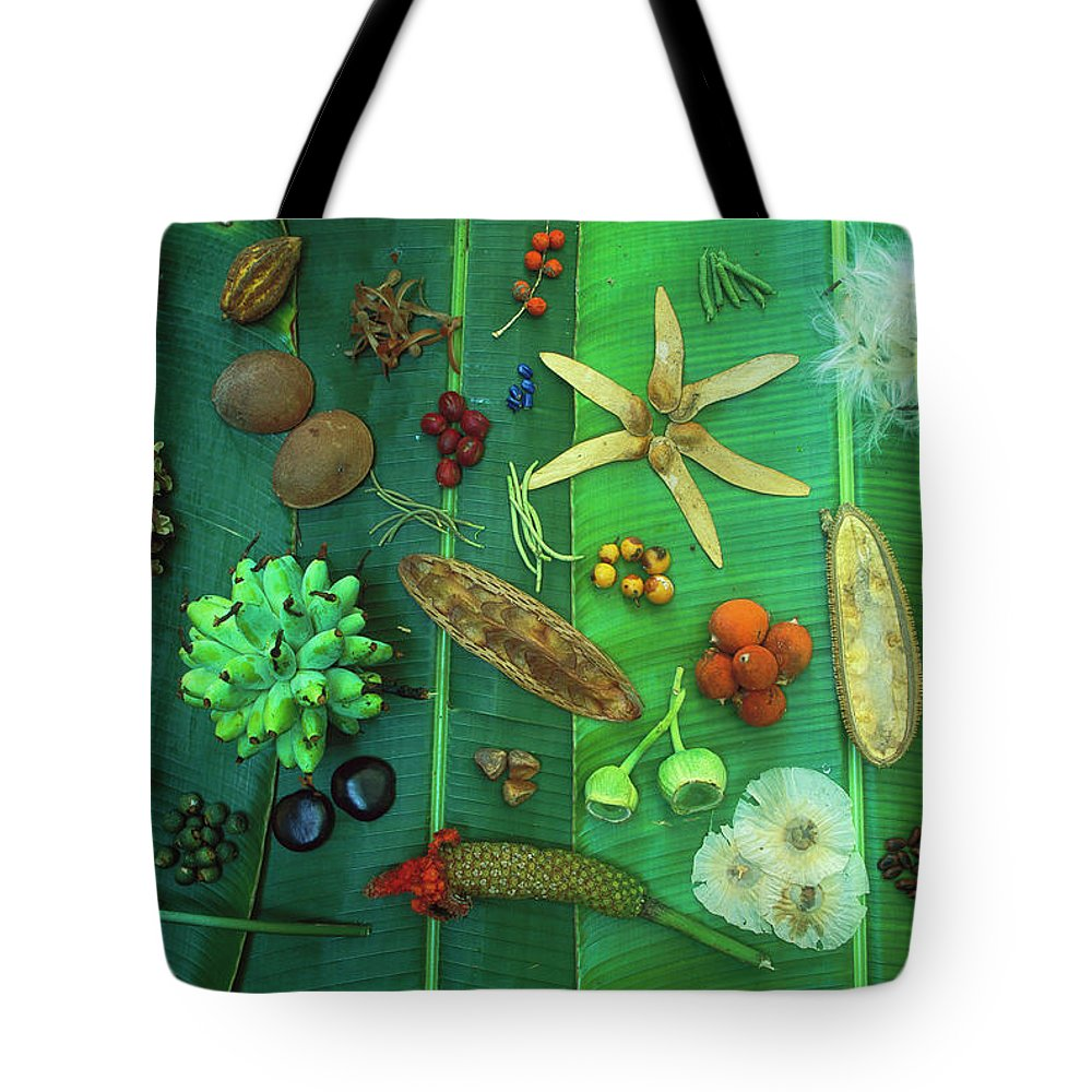 Barro Colorado Island Tote Bag featuring the photograph Variety Of Seeds And Fruits by Christian Ziegler