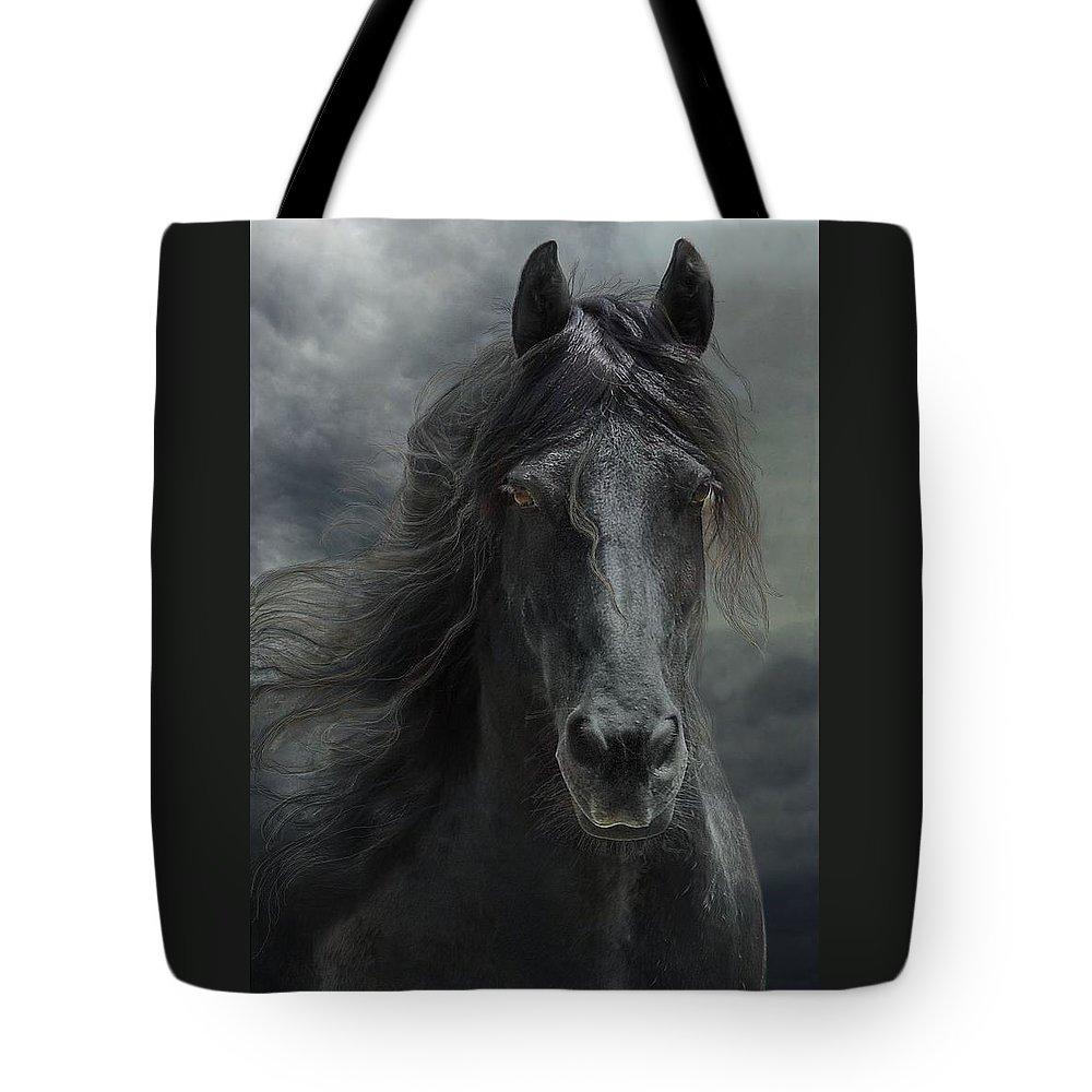 Fantasy Tote Bag featuring the photograph Veni vidi vici by Fran J Scott