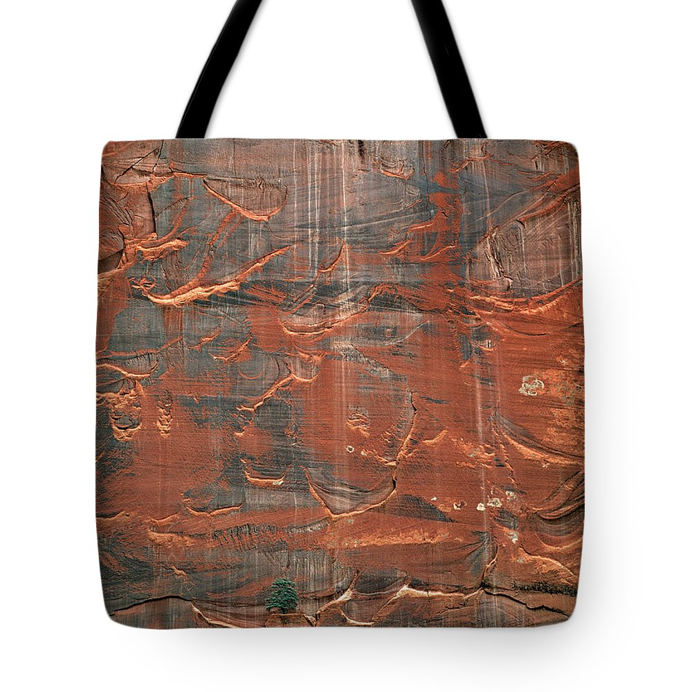 Alone Tote Bag featuring the photograph Vertical Design by Leland D Howard