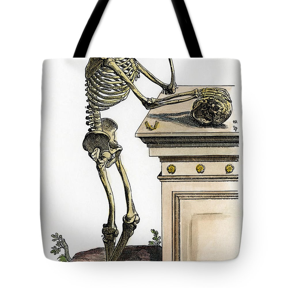 1543 Tote Bag featuring the photograph Vesalius: Skeleton, 1543 by Granger