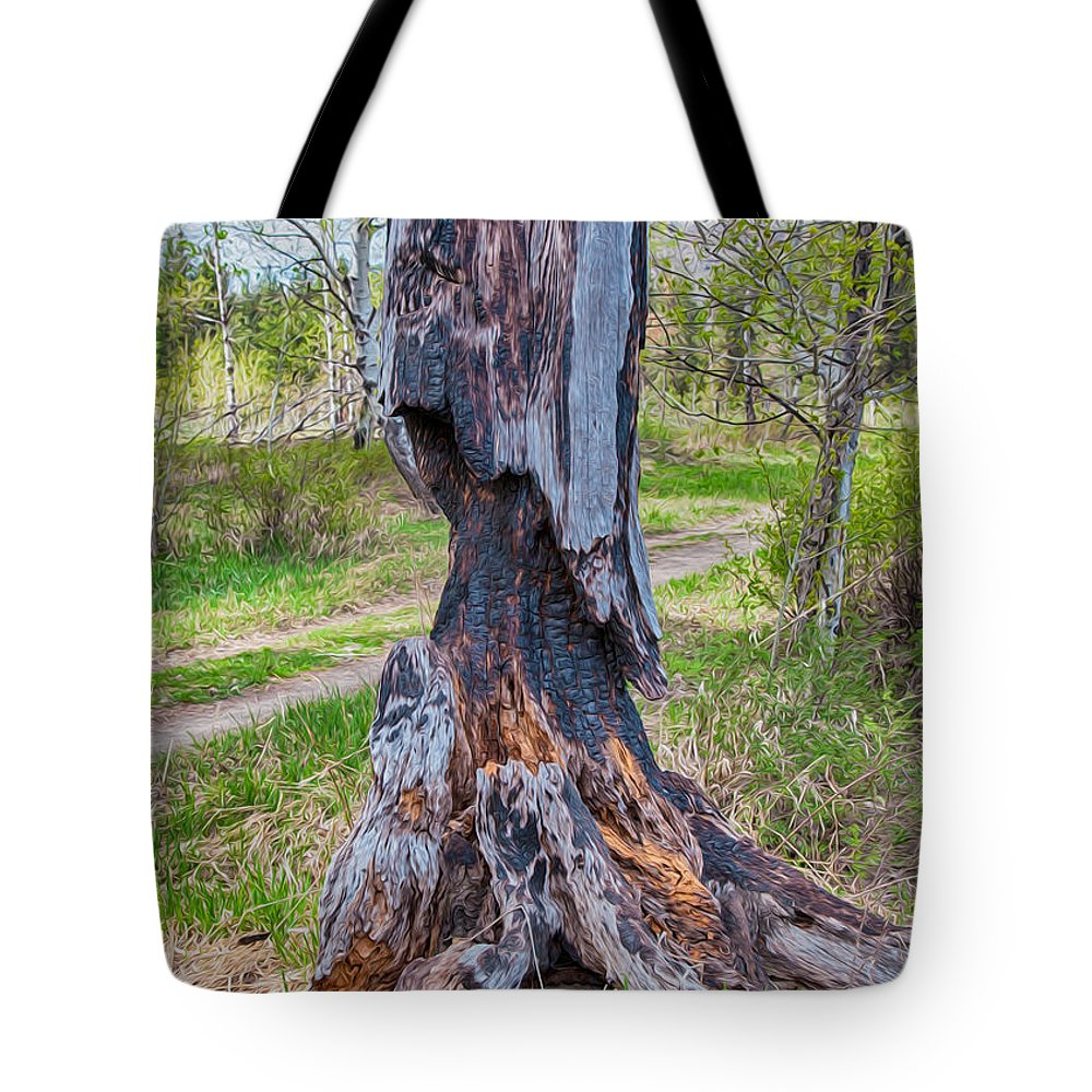 North Cascades Tote Bag featuring the painting Vibrant And Burnt Out by Omaste Witkowski