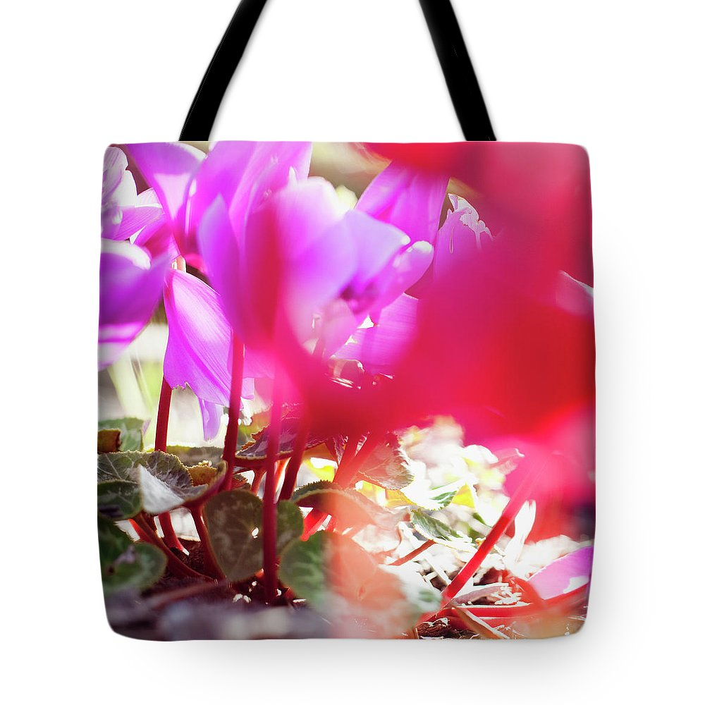 Shadow Tote Bag featuring the photograph Vibrant Magenta Cyclamen In Bloom by Erika Pino