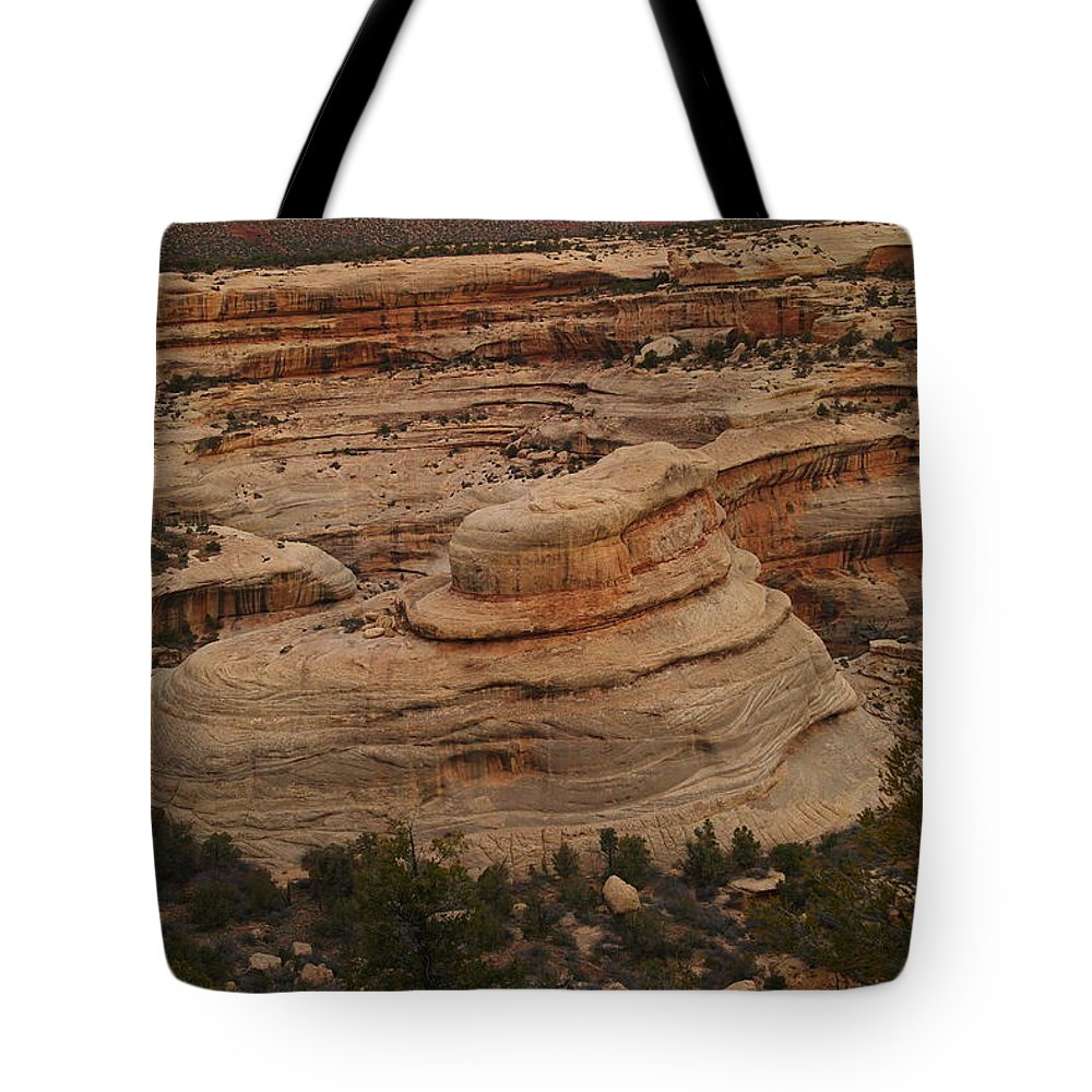 Canyon Tote Bag featuring the photograph View Of The Canyon by Jeff Swan