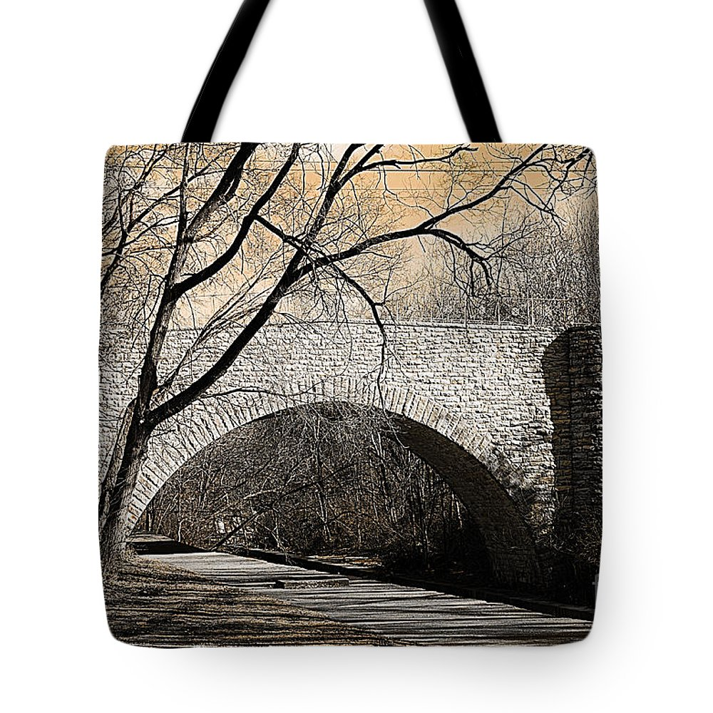 South Park Stone Bridge Tote Bag featuring the photograph Vintage Bridge In South Park by Luther Fine Art