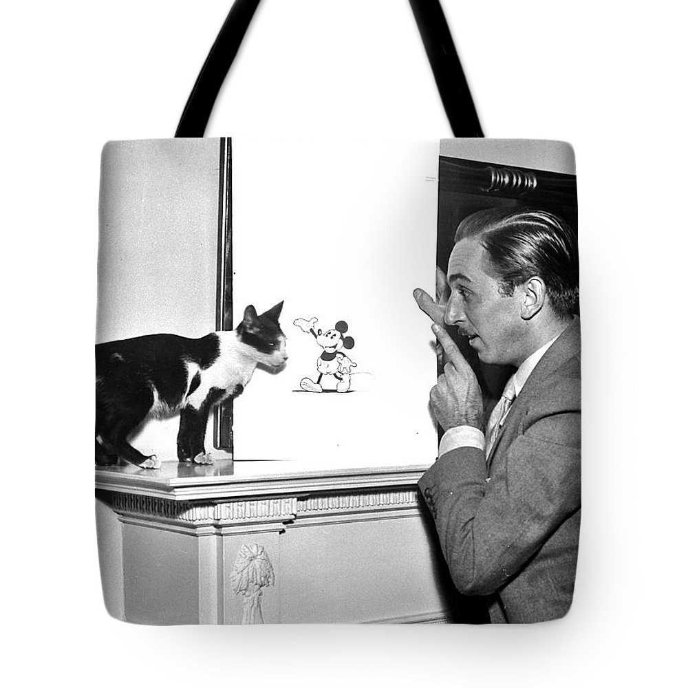 Disney Tote Bag featuring the photograph Visionary by Benjamin Yeager