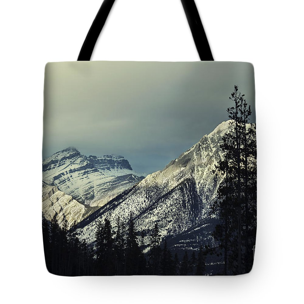 Canmore Tote Bag featuring the photograph Visions Prelude by Evelina Kremsdorf