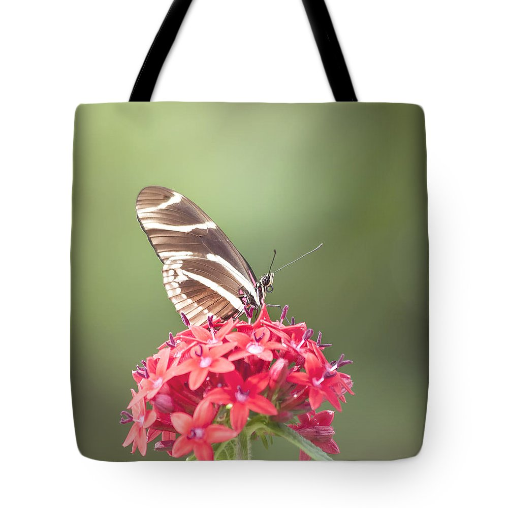 Butterfly Tote Bag featuring the photograph Visitor In The Garden by Kim Hojnacki