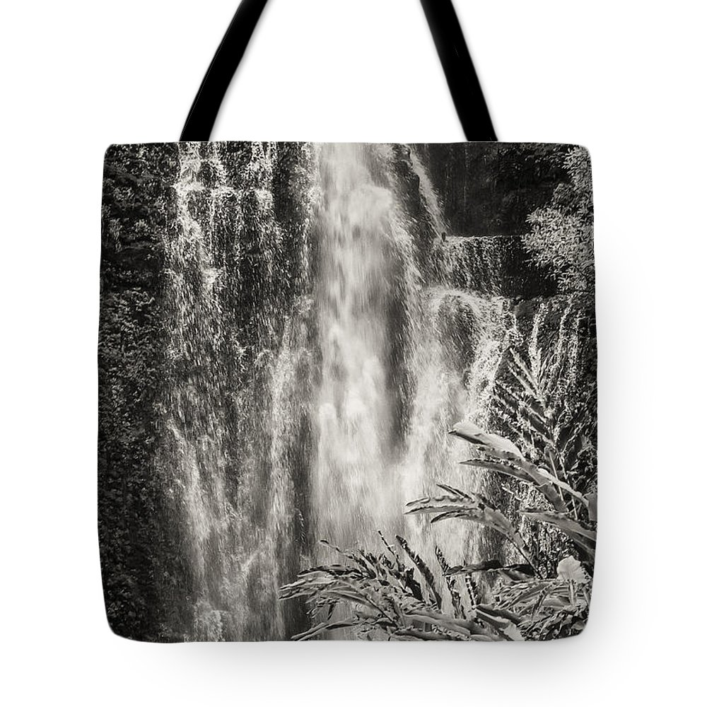 Wailua Falls Road To Hana Maui Hawaii Waterfall Waterfalls Water Landscape Landscapes Tree Trees Vine Vines Fern Ferns Nature Waterscape Waterscapes Black And White Sepia Tote Bag featuring the photograph Wailua Waterfall 3 by Bob Phillips