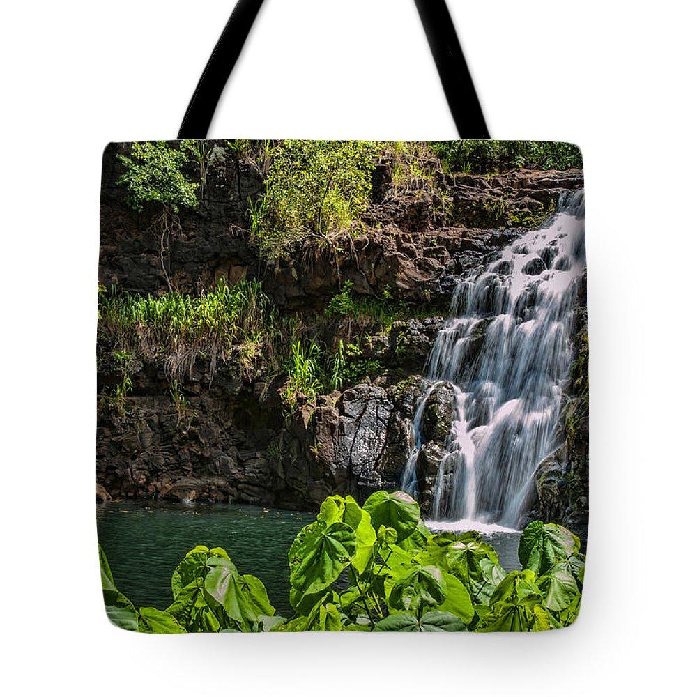 Hawaii Tote Bag featuring the photograph Waimea Falls by Dan McManus