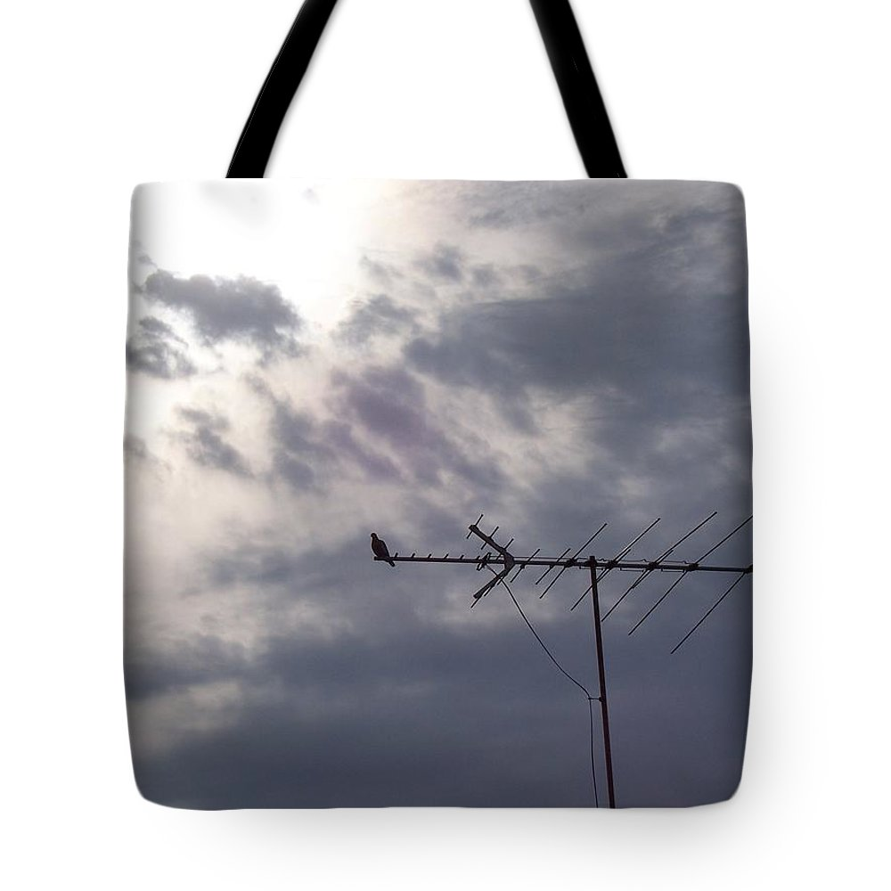Dove Tote Bag featuring the photograph Waitin For The Storm by Maria Manna