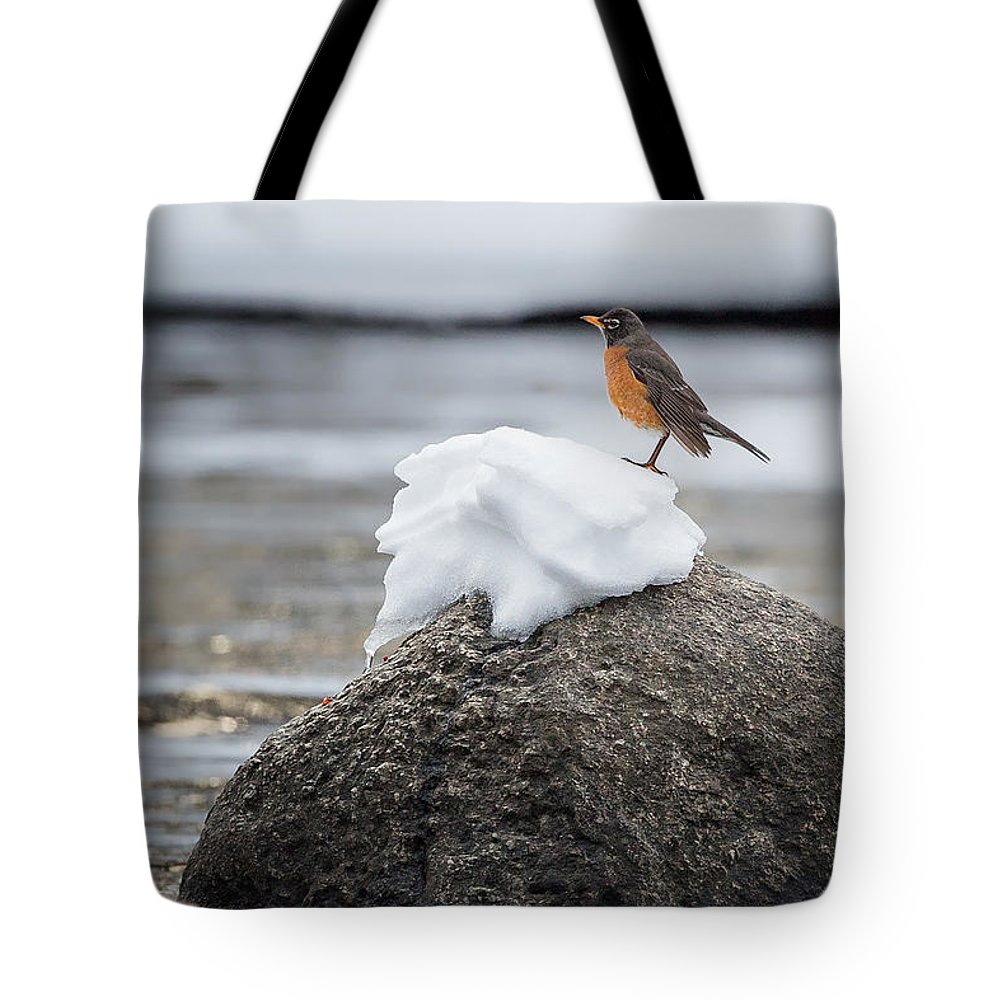 Robin Tote Bag featuring the photograph Waiting For Spring by Bill Wakeley