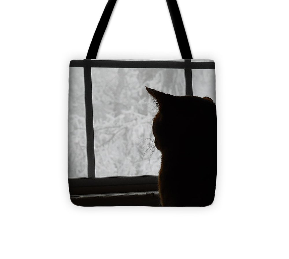 Cat Tote Bag featuring the photograph Waiting For Spring by Diannah Lynch