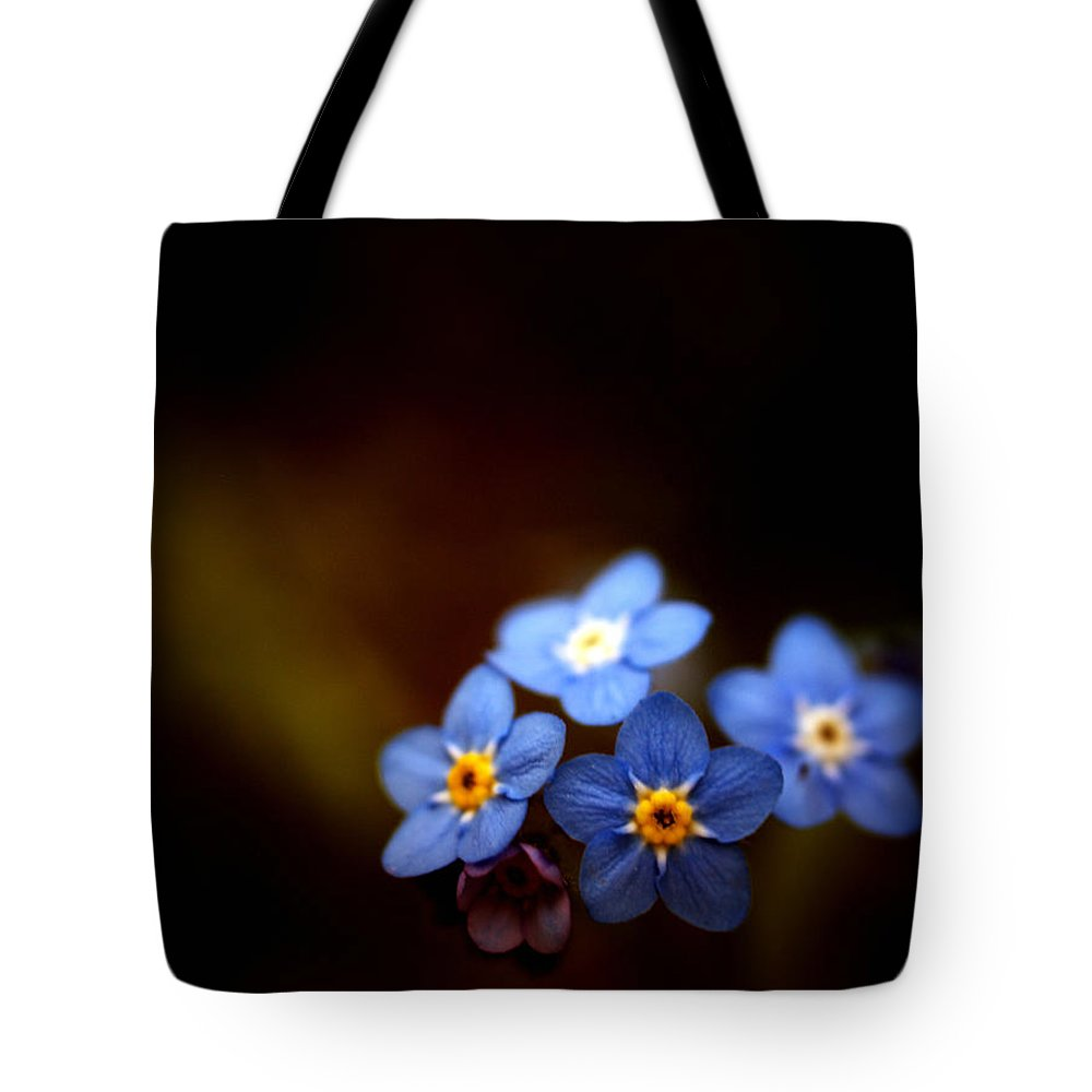 Waiting For The Light Tote Bag featuring the photograph Waiting For The Light by Rachel Mirror