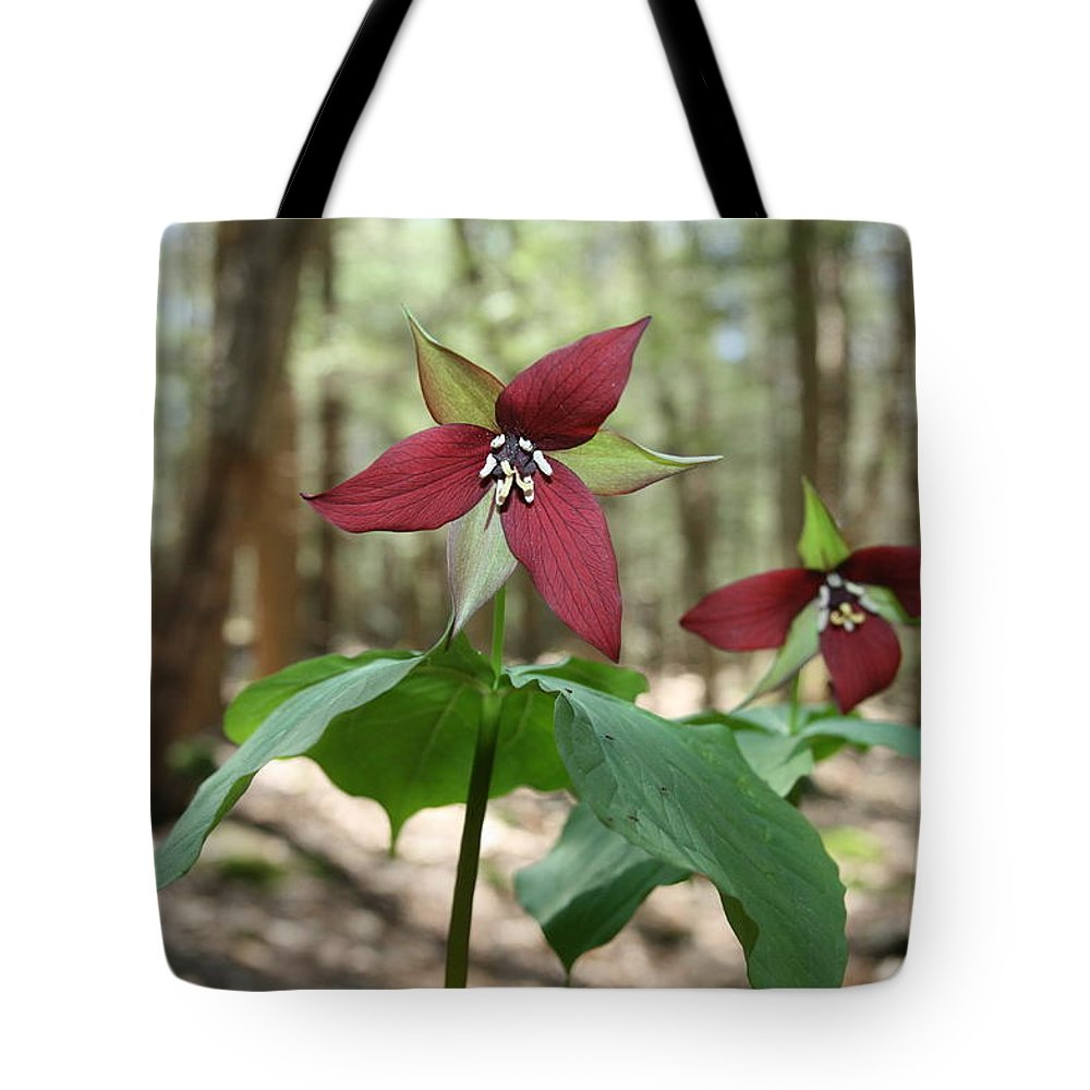 Wake Robin Tote Bag featuring the photograph Wake Robin Pair by Neal Eslinger