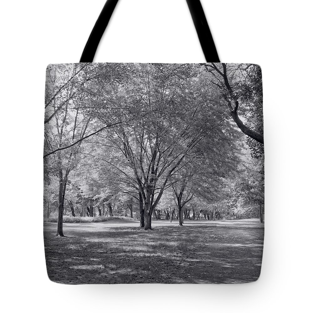 Landscape Tote Bag featuring the photograph Walk In The Park by Kim Hojnacki