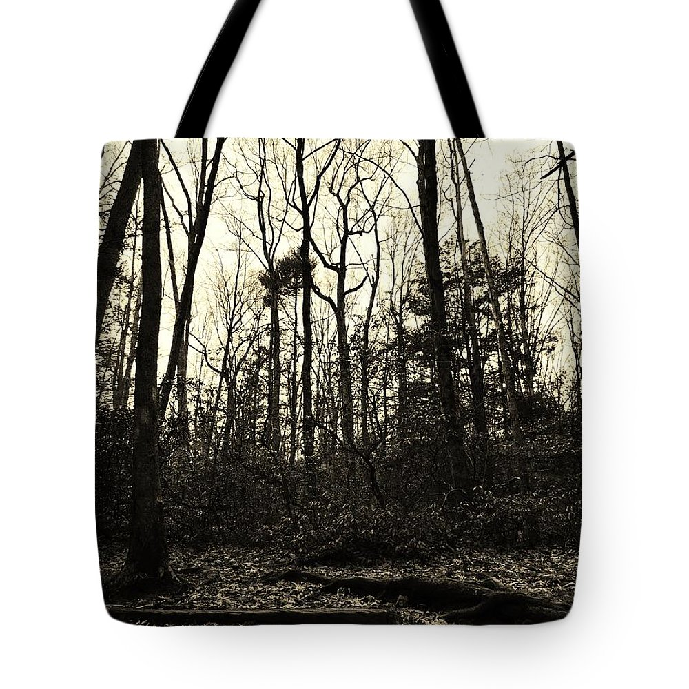 Sepia Tote Bag featuring the photograph Walk Into Nature by Michele Nelson