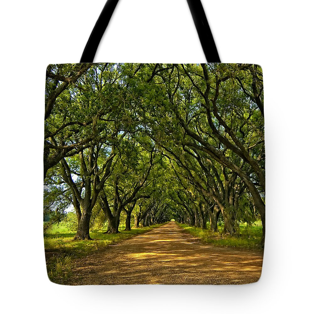 Evergreen Plantation Tote Bag featuring the photograph Walk With Me by Steve Harrington