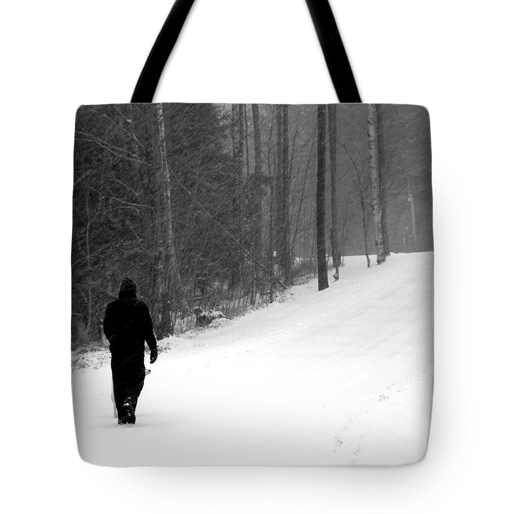 Walking In A Winter Wonderland Tote Bag featuring the photograph Walking In A Winter Wonderland by Patti Whitten