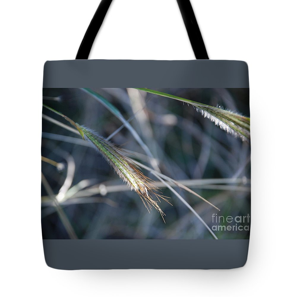 Close Up Tote Bag featuring the photograph Walking In Wind by M E Wood