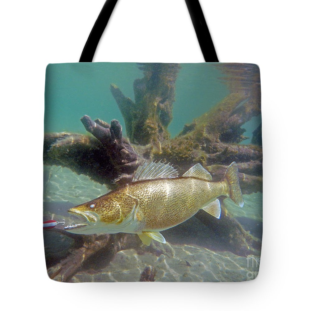 Fish Paintings Tote Bag featuring the mixed media Walleye And Dardevle by Paul Buggia