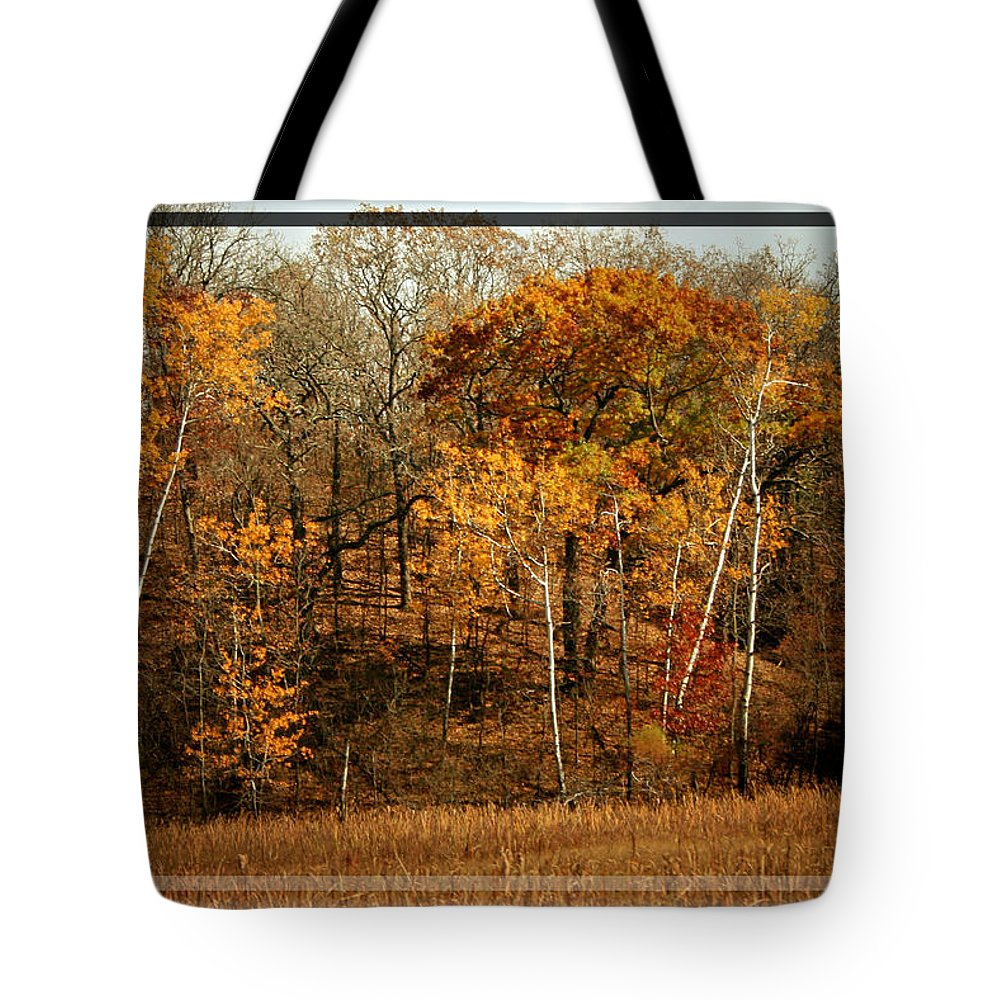 Autumn Tote Bag featuring the photograph Warm Autumn Glow by Susan McMenamin