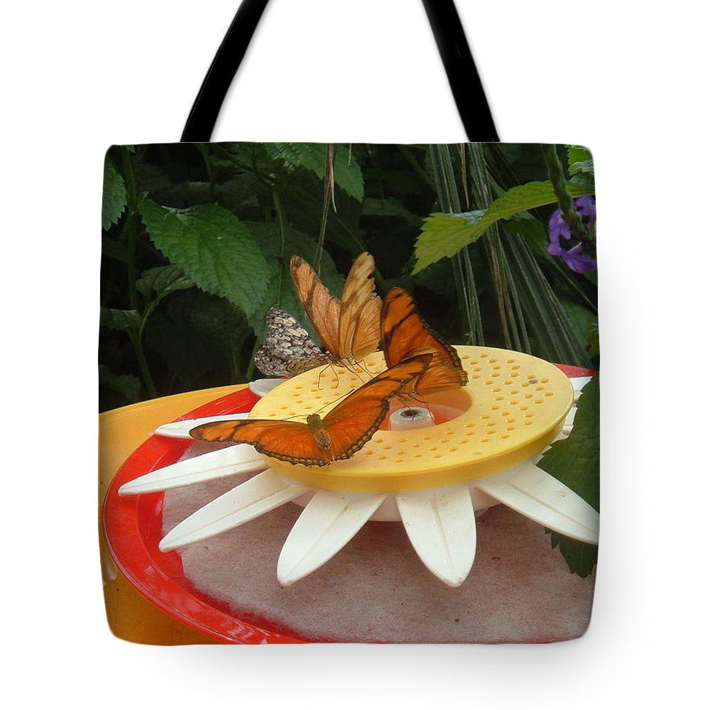 Butterfly Tote Bag featuring the photograph Warm Colorful Butterflies by Barbara McDevitt