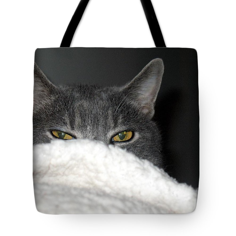 Cat Tote Bag featuring the photograph Warm Kitty by Wendy Gertz