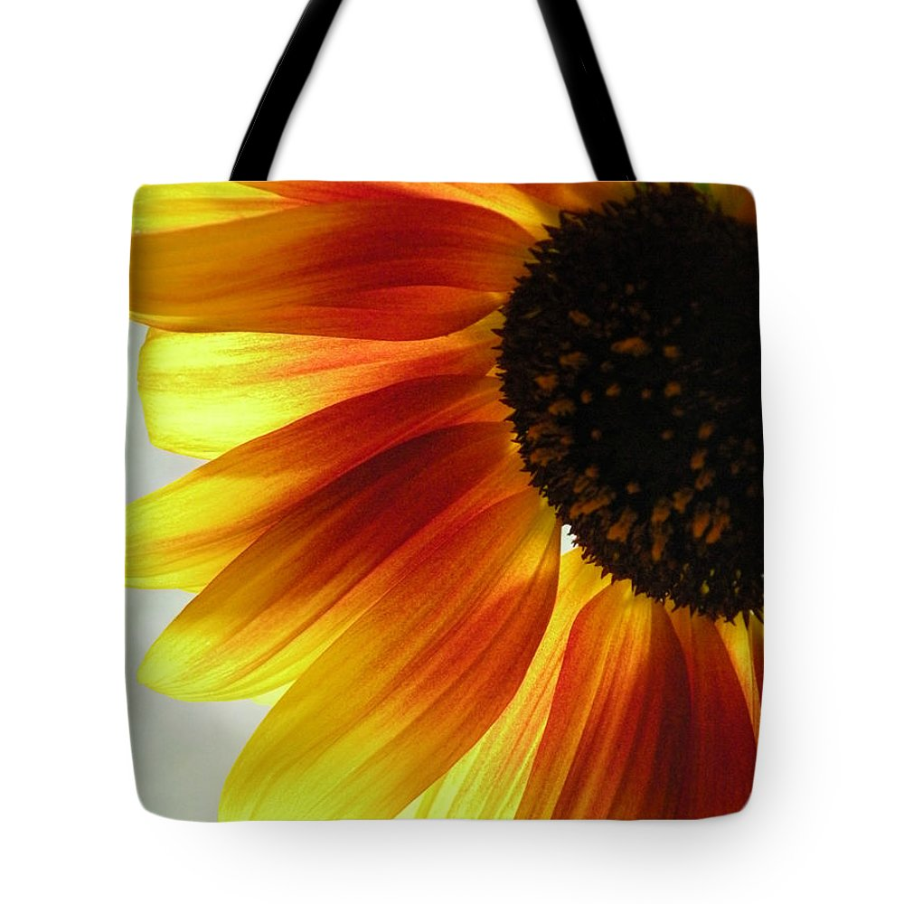 Sunflower Tote Bag featuring the photograph Warmth by Gina Bartosiewicz