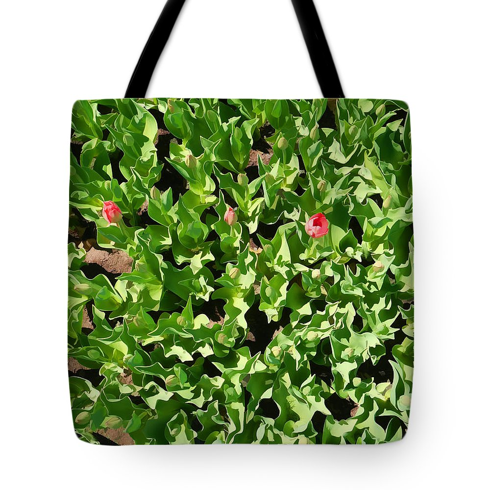 Albany Tote Bag featuring the photograph Washington Park IIi by Tina Baxter
