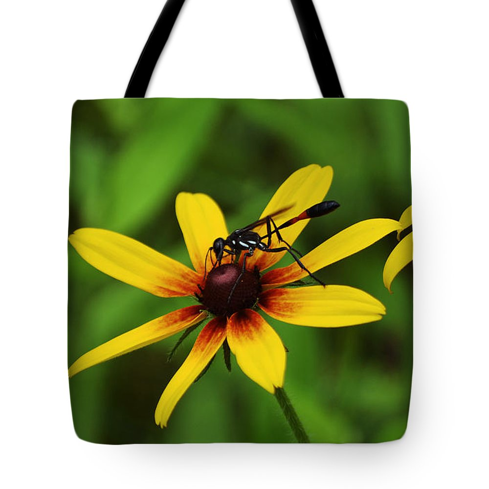 Wasp Tote Bag featuring the photograph Wasp On A Susan by Kevin Fortier