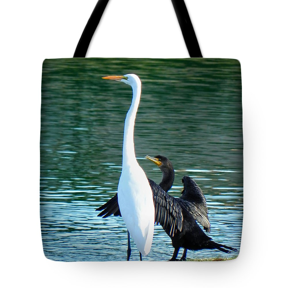 Heron Tote Bag featuring the photograph Watch This by Deb Halloran
