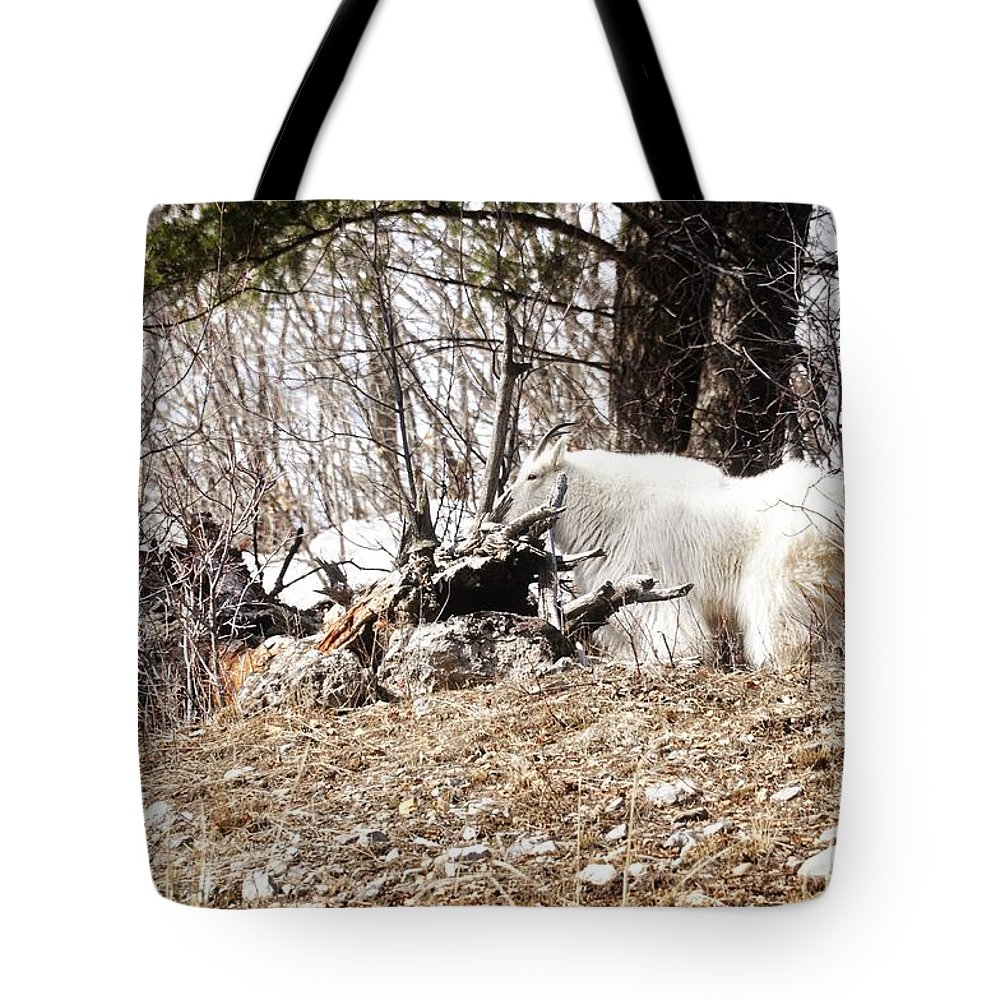 Alpine Tote Bag featuring the photograph Watching My Flock by Image Takers Photography LLC - Laura Morgan