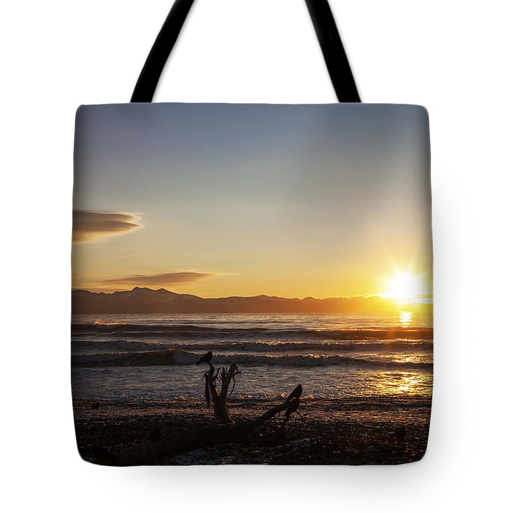 Alaska Tote Bag featuring the photograph Watching The Sunset With Friends by Michele Cornelius